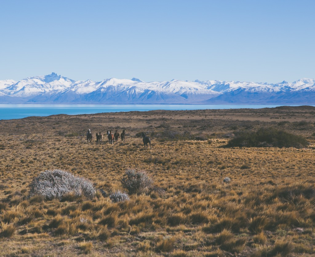 Who wouldn't want to go to Patagonia?