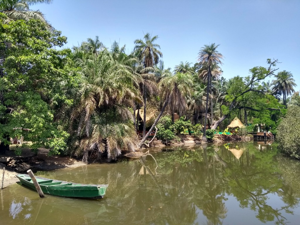 Sittin' on the dock of the mangrove creek